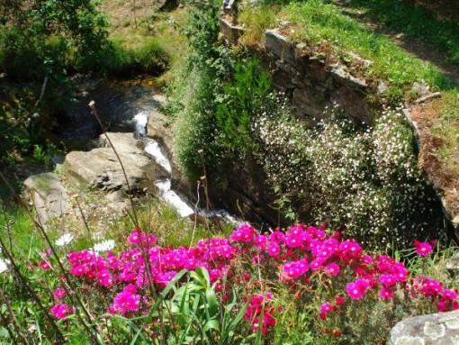 De waterval stroomt